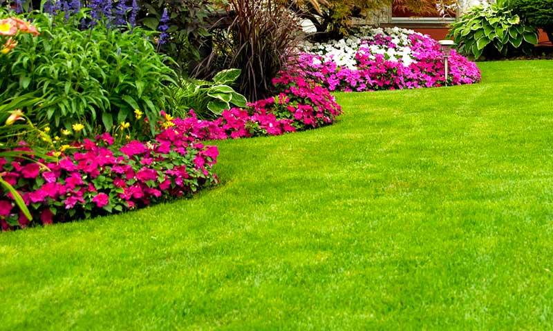 Diseño de jardines modernos.