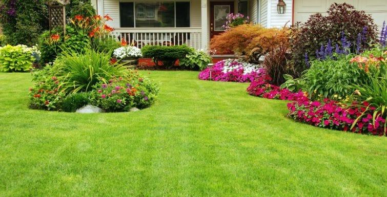 Jardines con mucho color para casa